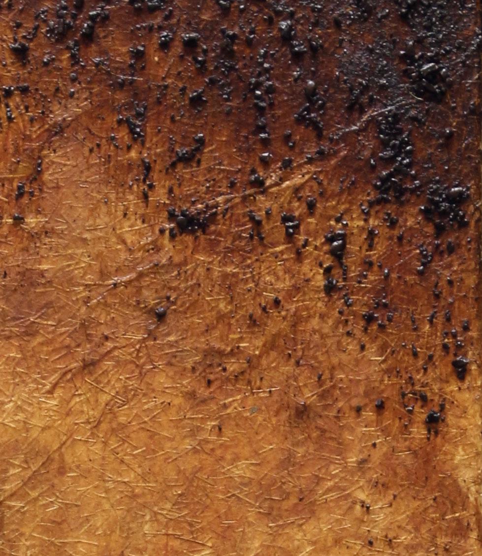Espresso Drip (Detail)